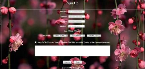 Registration Page Design
