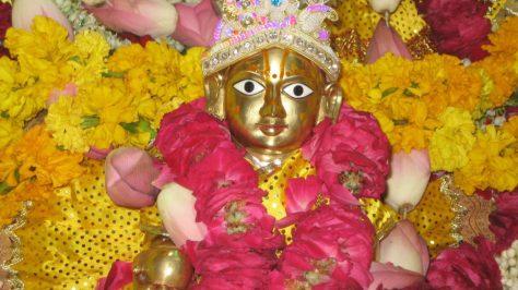 Jai Shree Radhe-Krishna Ji